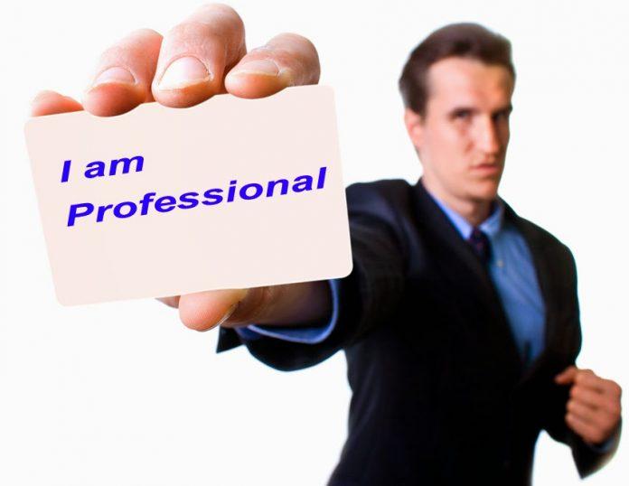 Dewan Pengawas Tenaga Profesional